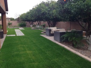 Lawn and outdoor seating